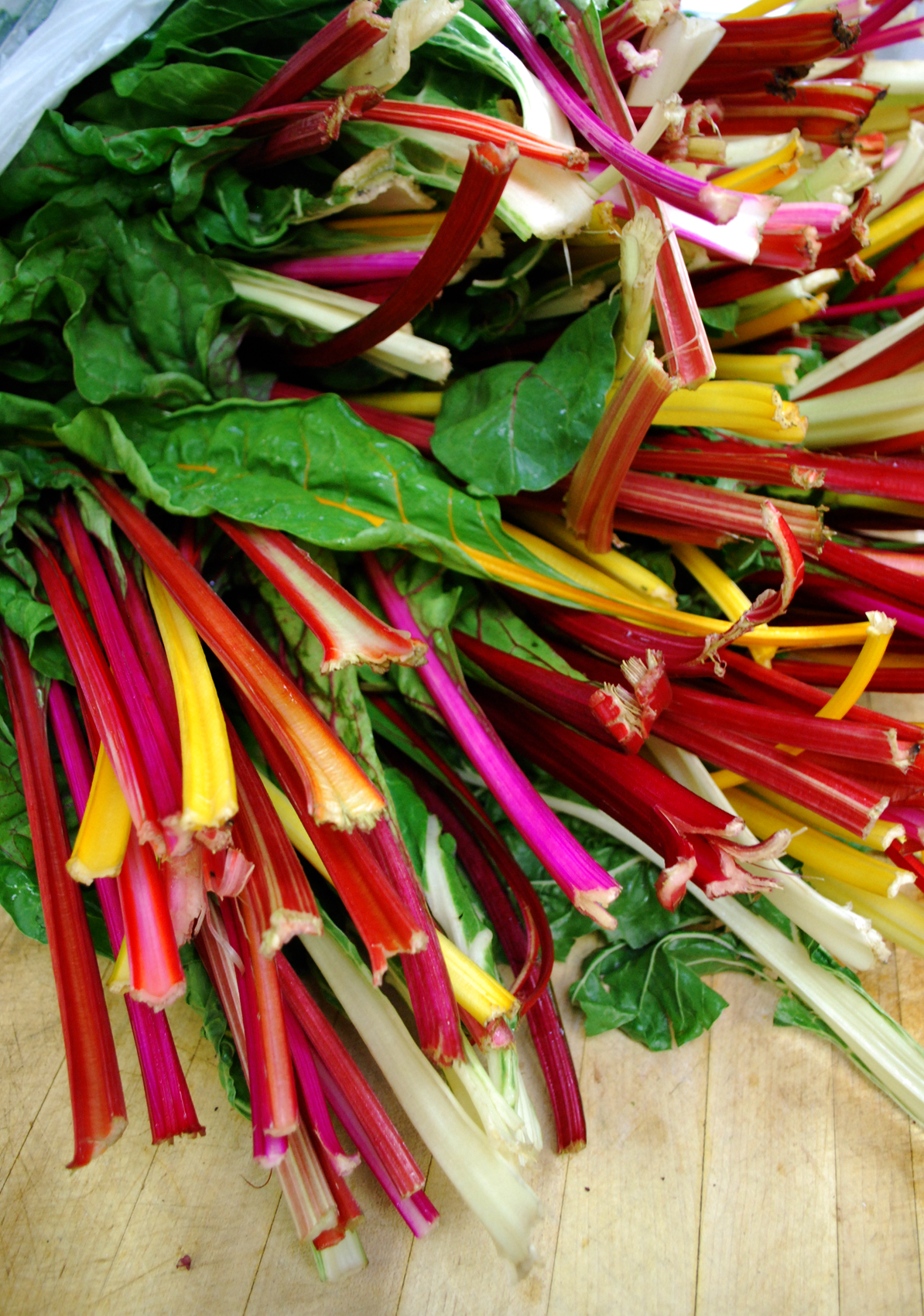 Somewhere over the rainbow: chard! |